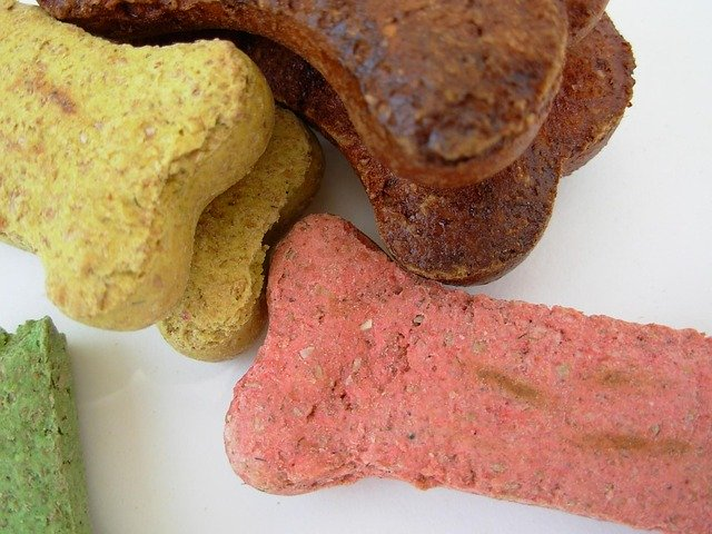 Stock Up on Pet Toys and Treats at Unleashed by Petco